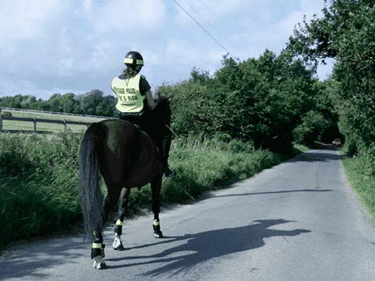 Hacking at Willowbrook Riding Centre