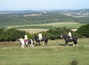 Stuning views on Kingly Vale (Tumuli)