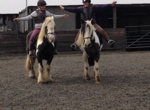 Horse riding lessons at Willowbrook Riding Centre