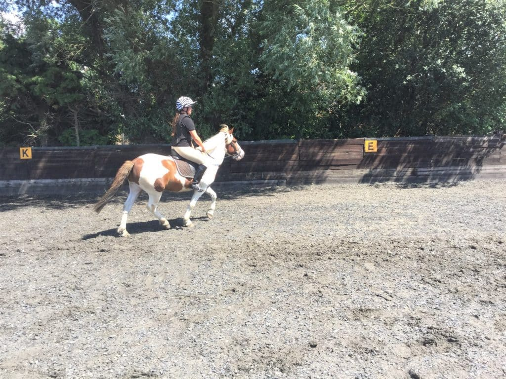 Private horse riding lesson at Willowbrook Riding Centre West Sussex